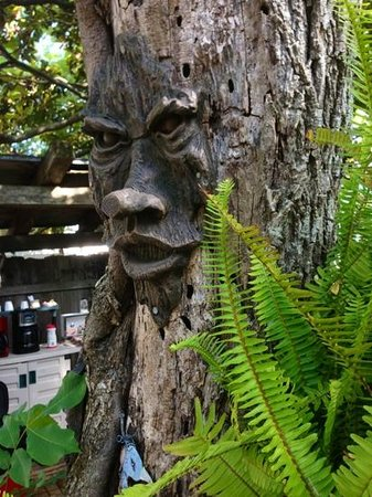 Sportsman's Lodge Motel & Marina: Tree People