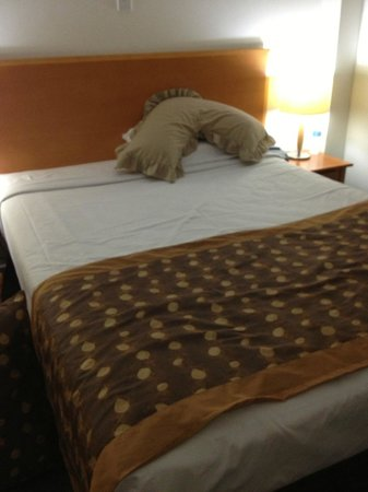 Quest Mont Albert: Thats my pillow but the bed was great and comfy.