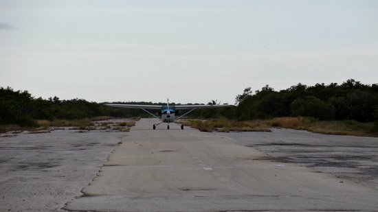 Skydive Key West : The runway and the plane we used to jump out of