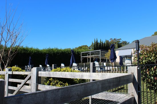 Bells at Killcare Boutique Hotel, Restaurant and Spa: The pool/veggie patch area.