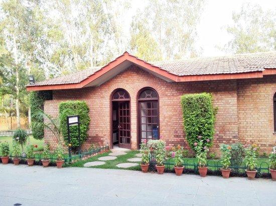 Ashok Country Resort: 08