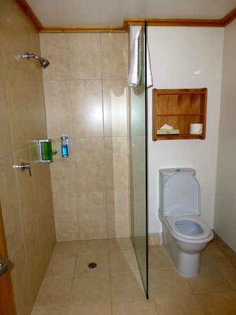 Coronation Lodge: Shower and toilet
