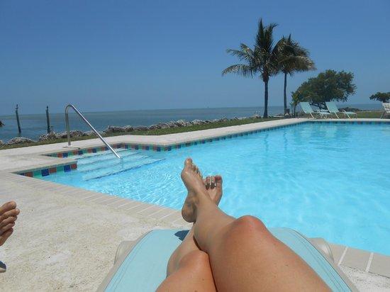 Seascape Motel and Marina: Underbar utsikt vid poolen