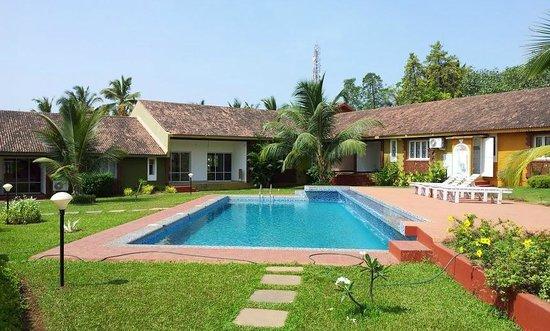 جنجر تري بوتيك ريزورت: Villas and other pool