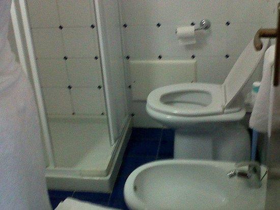 Hotel La Scogliera: disposizione del bagno
