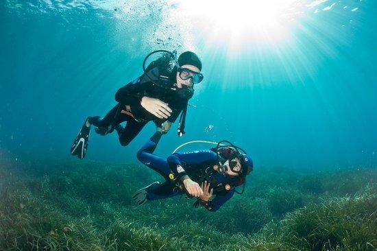 Palmes Beach : Une expérience unique, le baptême de plongée!!