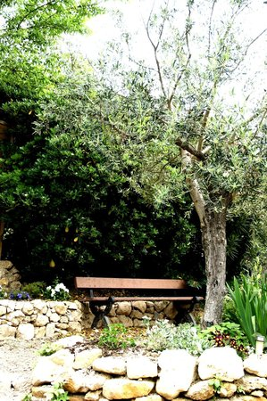 Le Clos du Jas : Jardin