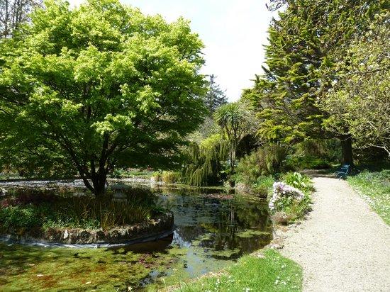 Trewidden Garden: Water is always great