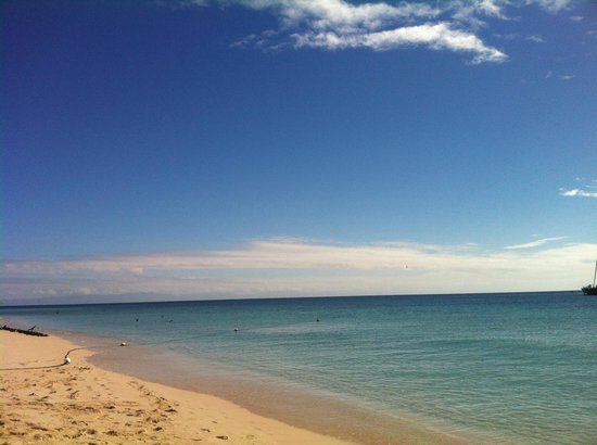 Ocean Spirit Cruises: Beautiful Michaelmas Cay