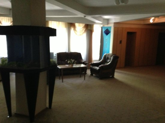 Hotel Dacia: Floor 4 lobby