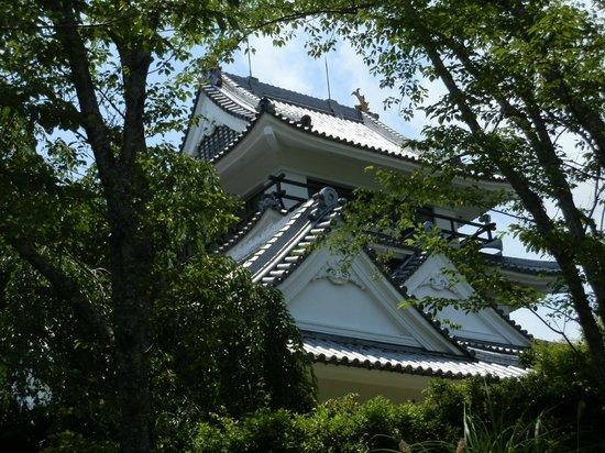 Hiwasa Castle