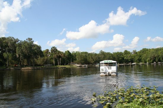 Tropical Resort and Marina: Hontoon Island State Park
