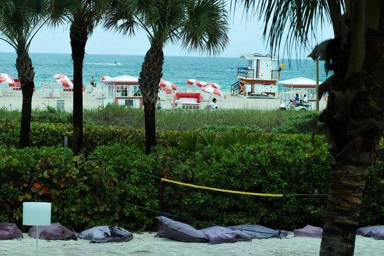 Kimpton Surfcomber Hotel: Private beachvolley field, private beach
