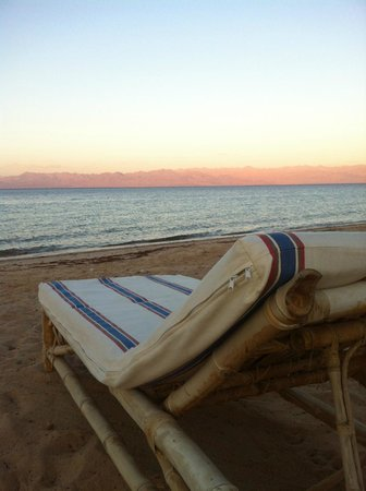 Photo of Habiba Beach Lodge Nuweiba