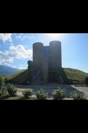 Chateau Copsa: Copsa Bulgarien