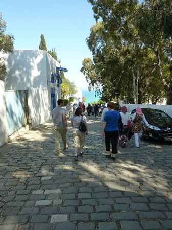 Hotel Dar Said : The street below the hotel, one of many charming walks in Sidi bou Said.