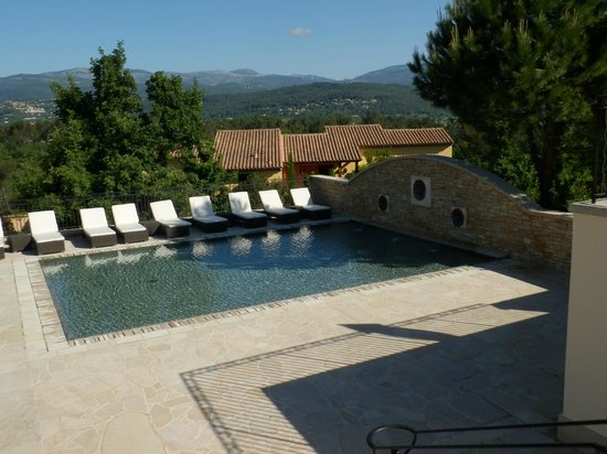 Terre Blanche Hotel and Spa : Foot Pool