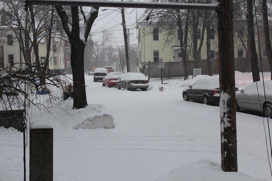 Inn On Carleton: my first morning outside