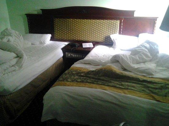 Stipp Hotel Kacyiru : Room 114 in old fashioned style