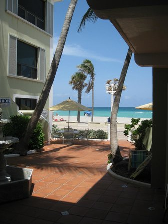 Sea Downs and the Bougainvillea: view from Appt.#2 with some of the patio area