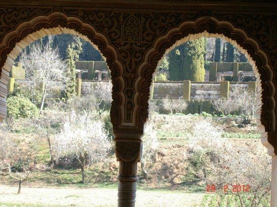 Abadia Hotel Granada: Generalife view