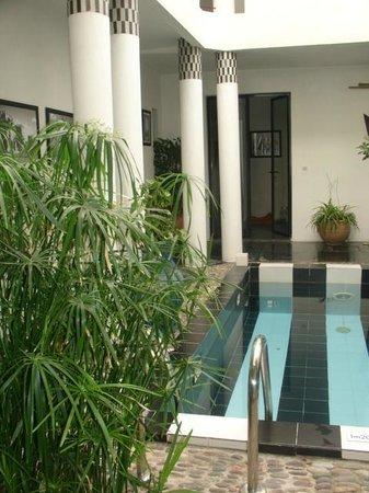 Riad Tchina: Vu de la piscine