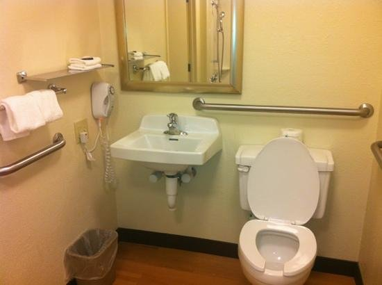 Red Roof Inn Buffalo Niagara Airport : large bathroom