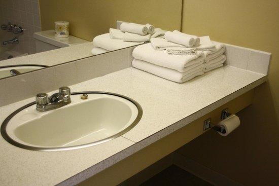 Interior Inn and Executive Suites: Standard Bathrom
