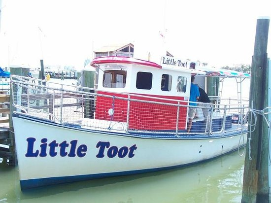 Little Toot Dolphin Adventures : Little Toot waiting for you.