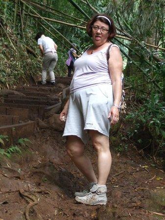 Manoa Falls : dur dur de marcher