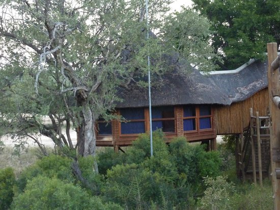 Ulusaba Safari Lodge : Treehouse suite