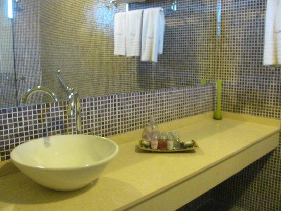 Villa Mansa Wine Hotel & Spa: Baño más que cómodo