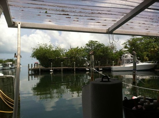 Porky's Bayside - Restaurant and Marina : awesome view of the bay