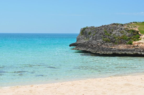 The Cove Eleuthera : beach