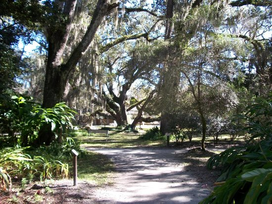 Peaceful scenery picture of dunlawton sugar mill gardens port orange tripadvisor - Things to do in port orange fl ...