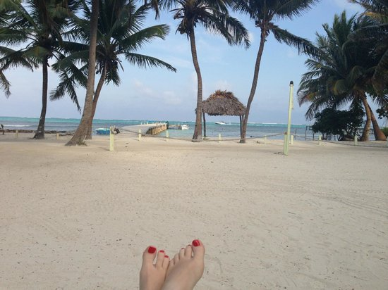 Caye Casa: View from the lawn chairs