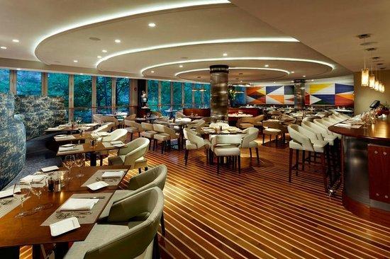 Mediterraneo Norwalk Restaurant Reviews Phone Number Photos