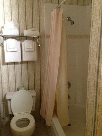 ดิ โอปอล ซานฟรานซิสโก: Pleasant bathroom - slightly confusing shower
