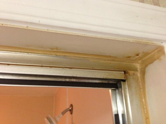 Inn of the Dove: Shower door