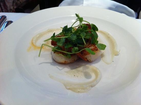 West Lodge Park Hotel: Juicy scallops starter