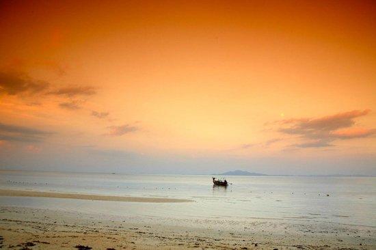 Phi Phi Hill Resort: Loh moo dee beach