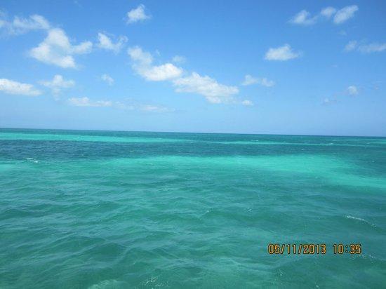 Tamarijn Aruba Best Room