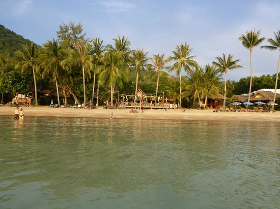 Palm Leaf Resort: The resort from the sea