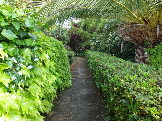 Biniarroca Hotel: A walk through the shady garden at Biniarocca.
