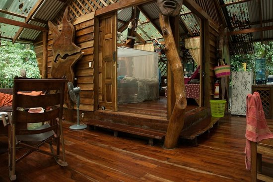 Jungle Thema Slaapkamer : Douche met uitzicht op de jungle picture of congo bongo ecolodges