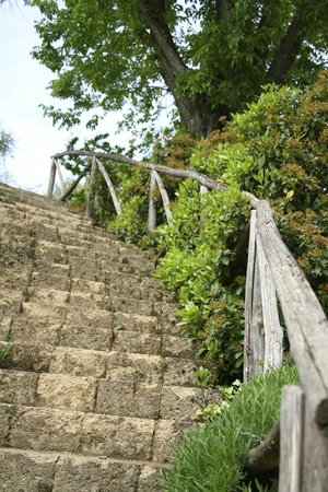 Il Borghetto di San Gimignano Agriturismo: Stairwell to pool area
