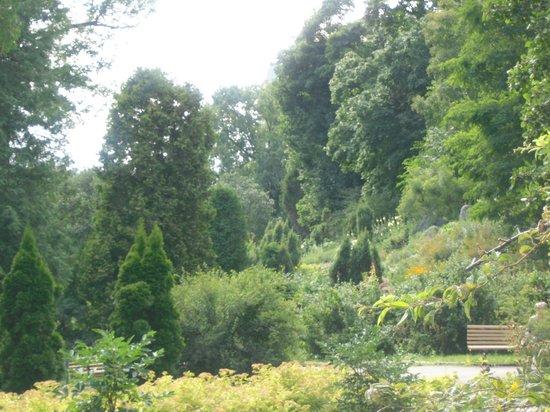 A. V. Fomin Botanical Garden