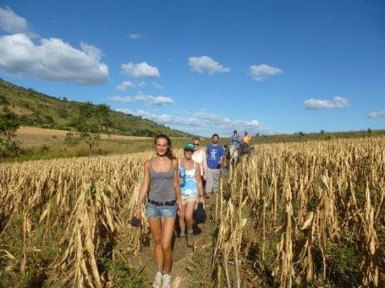 Sonati: Trek through agricultural fields