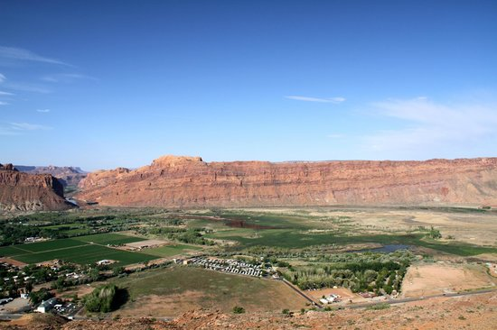 Slickrock Campground: Looking down from Slickrock, its the clump of trees lower right with Colorado River in the dista