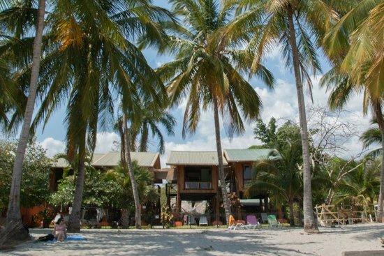 Samara Tree House Inn: huisjes vanaf het strand